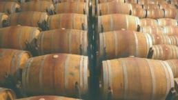 Wine Barrels for Winemaking